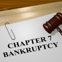 Asset chapter 7 bankruptcy document.